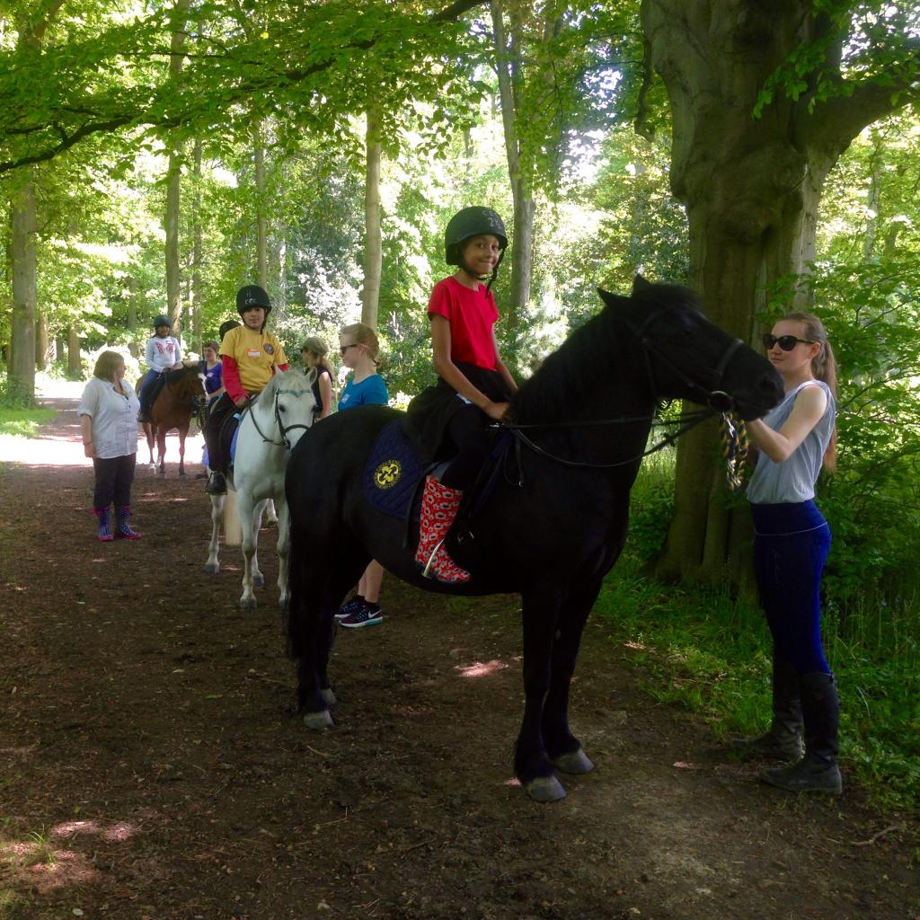 Learning horse-riding